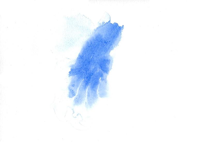 http://www.julienserve.com/files/gimgs/113_main-bleu-42.jpg