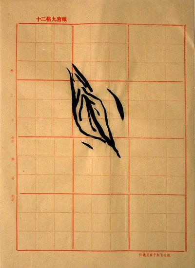 http://www.julienserve.com/files/gimgs/47_sinogramme-14.jpg