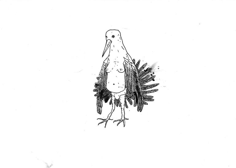 http://www.julienserve.com/files/gimgs/61_ofr-oiseau-10.jpg