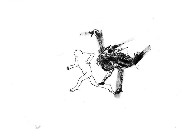 http://www.julienserve.com/files/gimgs/61_ofr-oiseau-12.jpg