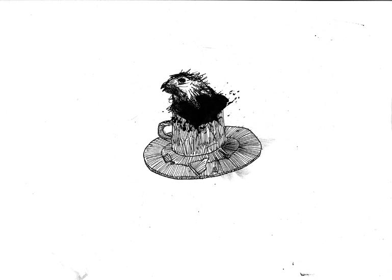 http://www.julienserve.com/files/gimgs/61_ofr-oiseau-17.jpg