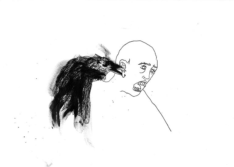 http://www.julienserve.com/files/gimgs/61_ofr-oiseau-20.jpg