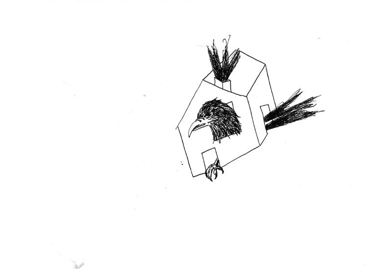 http://www.julienserve.com/files/gimgs/61_ofr-oiseau-25.jpg