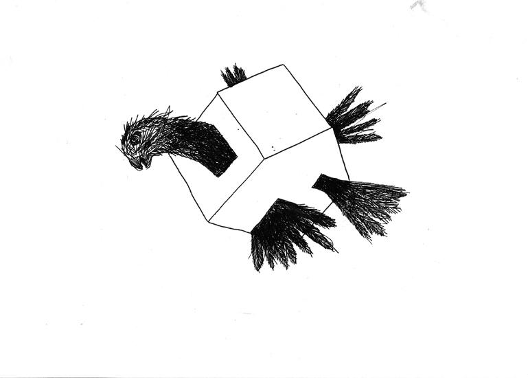 http://www.julienserve.com/files/gimgs/61_ofr-oiseau-27.jpg