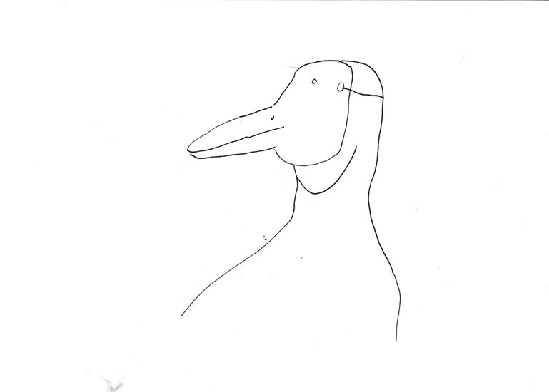 http://www.julienserve.com/files/gimgs/61_ofr-oiseau-32.jpg