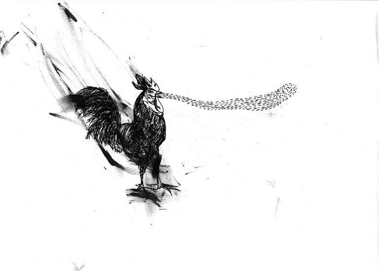 http://www.julienserve.com/files/gimgs/61_ofr-oiseau-37.jpg