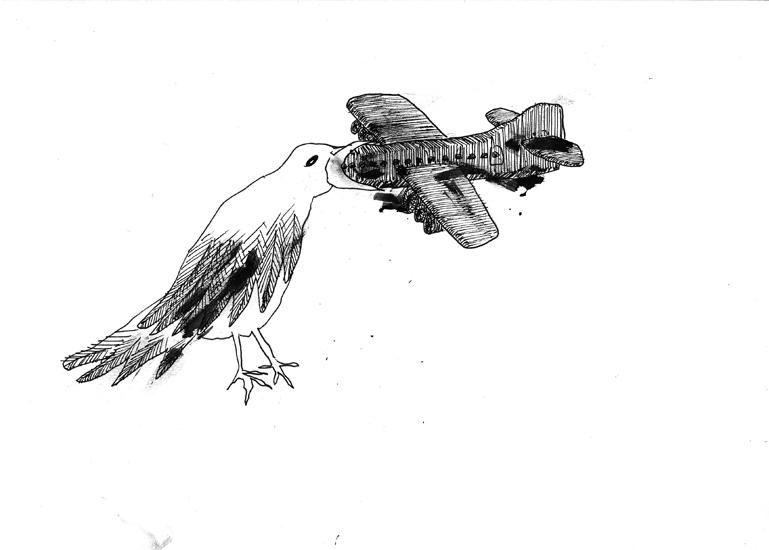http://www.julienserve.com/files/gimgs/61_ofr-oiseau-4.jpg