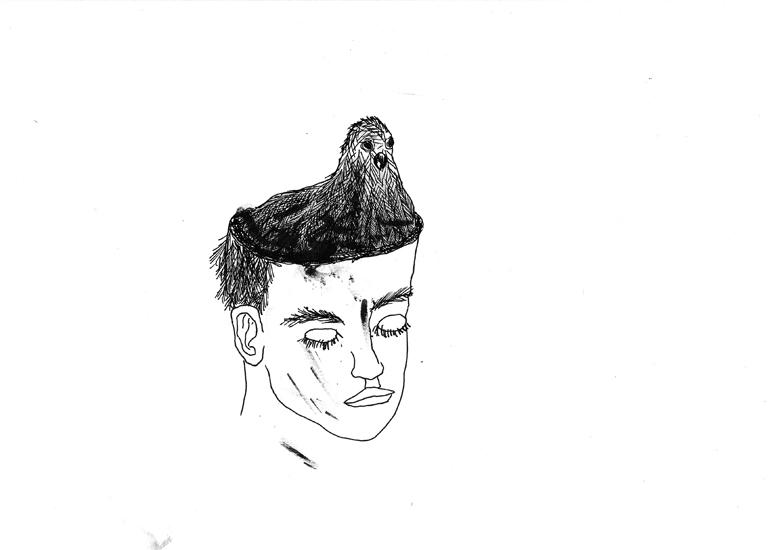 http://www.julienserve.com/files/gimgs/61_ofr-oiseau-44.jpg