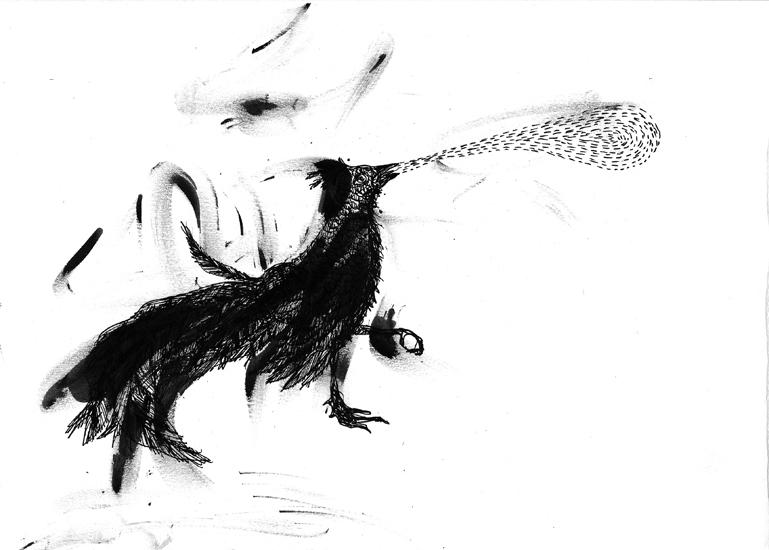 http://www.julienserve.com/files/gimgs/61_ofr-oiseau-45.jpg