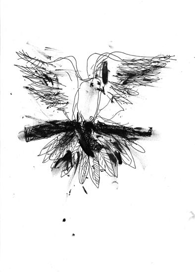 http://www.julienserve.com/files/gimgs/61_ofr-oiseau-47.jpg