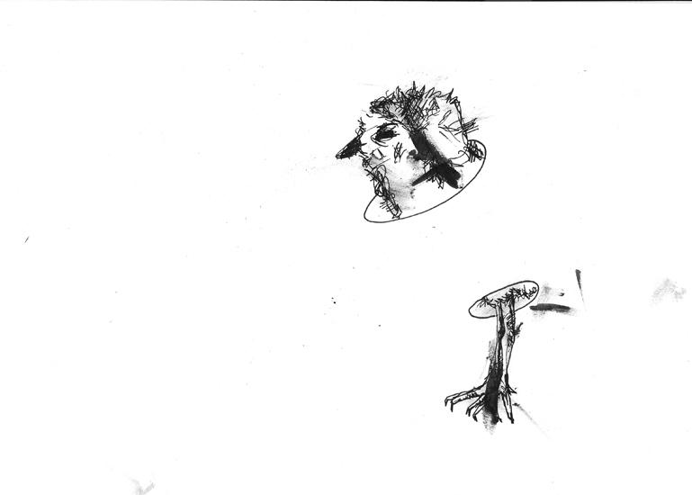http://www.julienserve.com/files/gimgs/61_ofr-oiseau-51.jpg