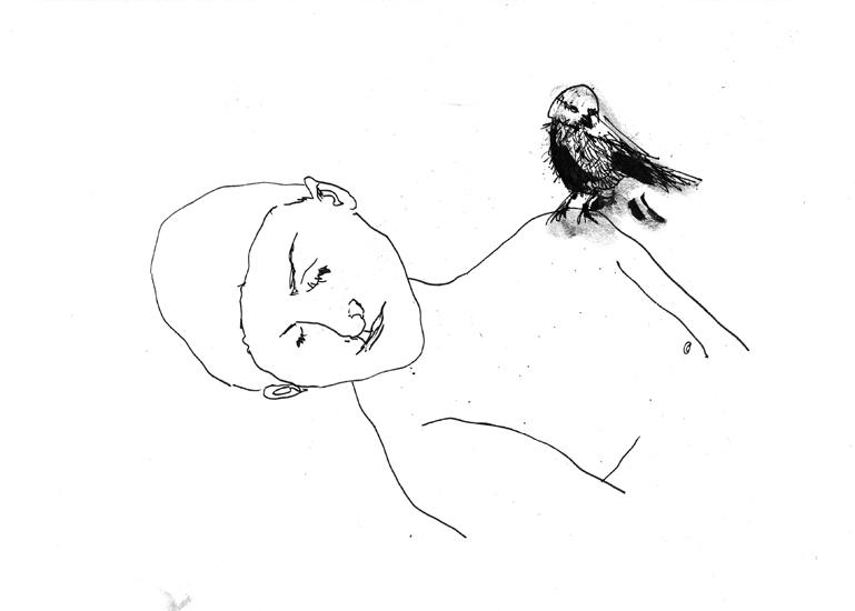http://www.julienserve.com/files/gimgs/61_ofr-oiseau-55.jpg