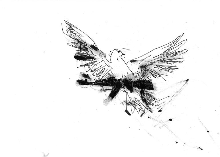 http://www.julienserve.com/files/gimgs/61_ofr-oiseau-57.jpg