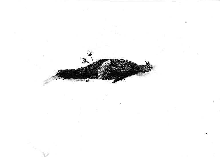http://www.julienserve.com/files/gimgs/61_ofr-oiseau-6.jpg