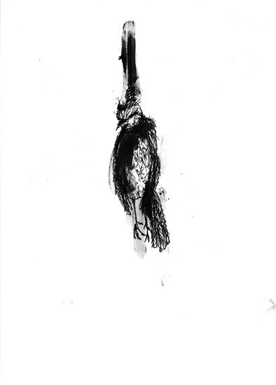 http://www.julienserve.com/files/gimgs/61_ofr-oiseau-62.jpg