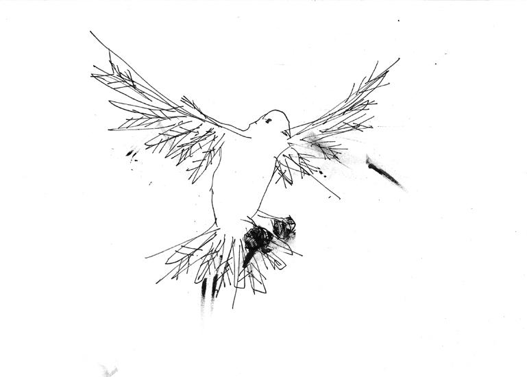 http://www.julienserve.com/files/gimgs/61_ofr-oiseau-63.jpg